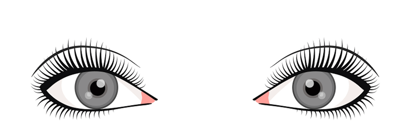 shape-natural-eyelash