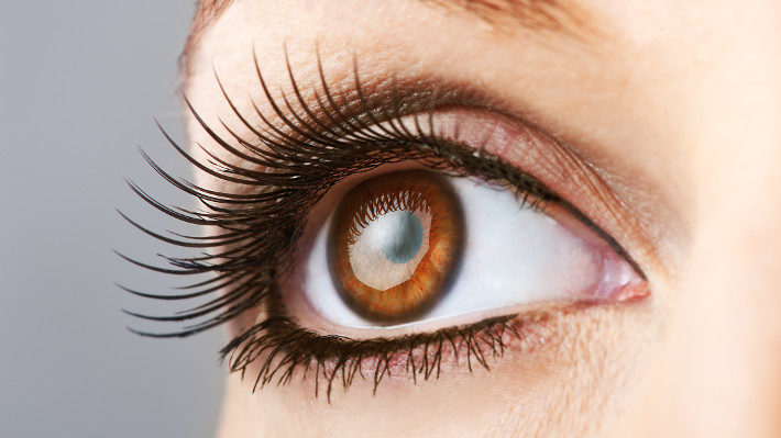 Lash Length: How Long Should Your Lash Extensions Be?